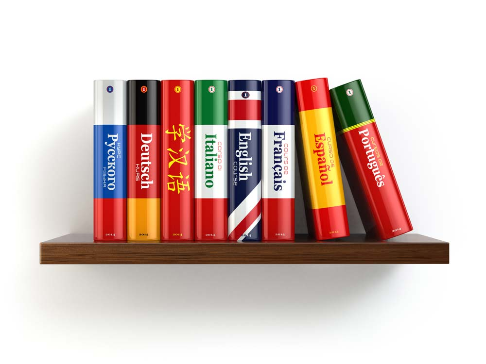 The Role of a Language